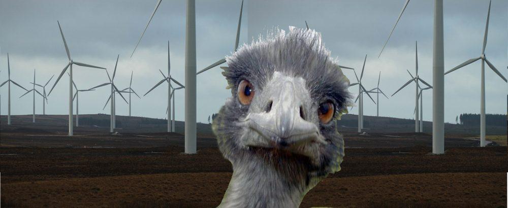 Le grand débat national éolien